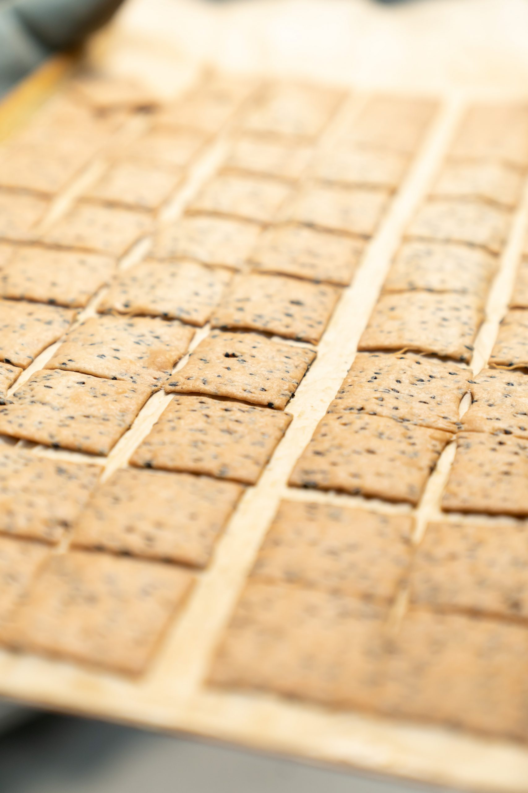 MADLAB crackers salés
